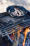 Campfire Cooking Royalty Free Stock Images