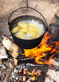 Campfire cooking Royalty Free Stock Photography