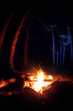 Campfire in the dark forest Royalty Free Stock Images