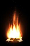Campfire in dark Stock Image