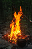Campfire at down in the forest Stock Image