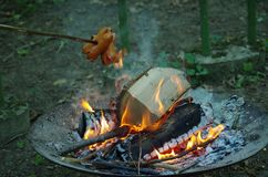 Campfire, Fire, Animal Source Foods, Forest stock photo