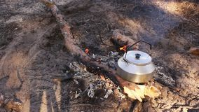 Campfire breakfast tea weekend stock video footage