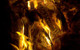 Campfire firy fire ash flames and coals closeup Stock Photos