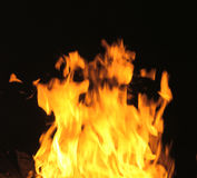 Campfire Flames. Burning orange and yellow flames of a campfire at night Royalty Free Stock Photos