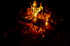 Campfire flames. On a clear night royalty free stock photography