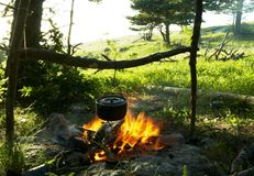 Campfire in forest stock photo