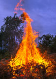 Campfire Forest stock photography