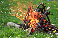 Campfire among green grass and flowers Royalty Free Stock Photography