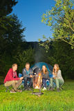 Campfire royalty free stock photos
