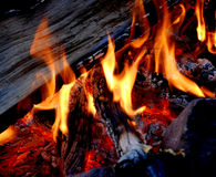 Campfire with Hot Coals. Hot coals and flames in buring campfire Royalty Free Stock Photos