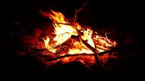 Campfire Landscape Scene stock video footage