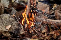 Campfire is lit in the autumn forest. Dry twigs burning on a background of yellow Golden forests. Autumn mood Stock Photography