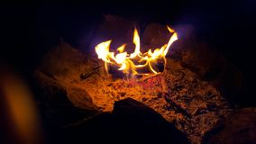 Campfire. Log wood fire in the night time Royalty Free Stock Photos