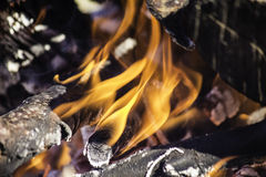 Campfire. A look into a campfire, a glimpse of the red hot fire Royalty Free Stock Photography
