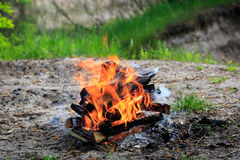 Campfire on meadow in green forest Stock Image
