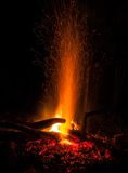 The Campfire. A mesmerising campfire in the woods Royalty Free Stock Image