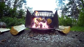 Front Facing Fire Pit stock video