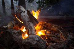 Campfire in the Mountains. A fire in the woods high up in the Colorado mountains Royalty Free Stock Photos