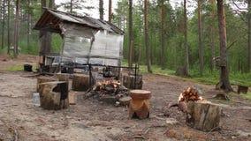 Campfire near gazebo in forest stock video footage