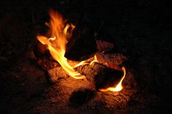 Campfire at Night Stock Image