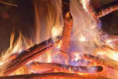 Campfire at the night. Stock Photos