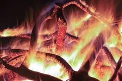 Campfire at the night. Royalty Free Stock Image