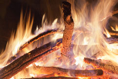 Campfire at the night. Stock Photo
