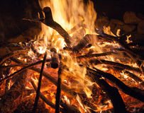 Campfire at the night. Royalty Free Stock Photography