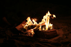 Campfire at night Stock Photo