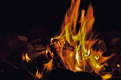 Campfire at night Royalty Free Stock Photography