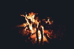 Campfire in the night. royalty free stock images