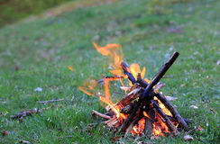 Campfire On Meadow Royalty Free Stock Image