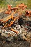 campfire över korvar fotografering för bildbyråer