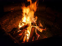 Campfire. Outdoor wood camp fire in the night Stock Image