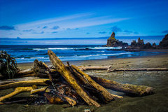 Campfire on Shi Shi Beach with sea stacks in background Stock Photography