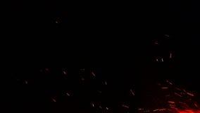 Campfire Sparks Background