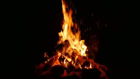 Campfire stock footage stock video footage