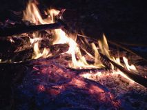 Campfire at night, burning dead trees, photo taken in the UK. Campfire in the summertime at night, burning dead trees, photo taken in the UK royalty free stock photos