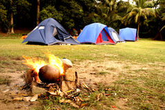 Campfire at tropical campsite Stock Images