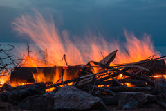 Campfire at twilight on beach Royalty Free Stock Photo