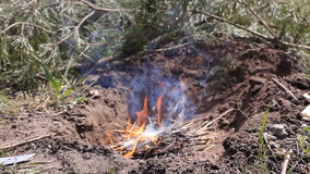 Campfire wide shot. A bright fire burns on the ground. The tongues of fire are breaking ever stronger . HD. Campfire wide shot. A bright fire burns on the ground stock footage