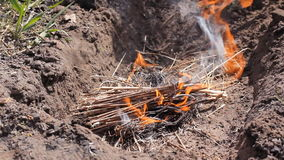 Campfire wide shot. A bright fire burns on the ground. The tongues of fire are breaking ever stronger . HD. Campfire wide shot. A bright fire burns on the ground stock video footage