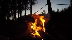 Campfire wide shot in summer evening stock video