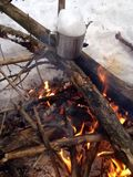 Campfire in winter forest Stock Image