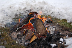 Campfire in the Winter Royalty Free Stock Photos