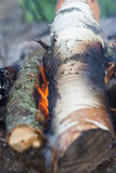 Campfire wood for barbecue Stock Photo