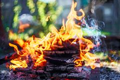 Campfire of wood pile with flame tongues burning at summer sunset at countryside. Natural fire background.  stock photo