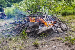 Campfire woods close-up Royalty Free Stock Photography