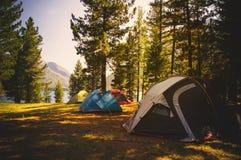 Campground στο taiga φθινοπώρου στη Σιβηρία στοκ εικόνες